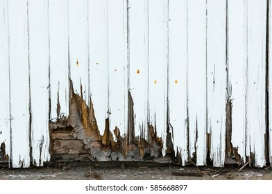 A white painted wood facade on a house which is rotten in the bottom needing replacement repair. falling apart