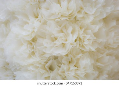 white paper flowers (Blur for background)