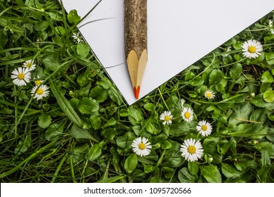 white paper on grass with big wooden pencil and empty space for copy or text