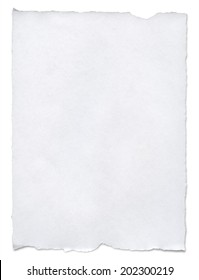 white paper tears, isolated on white with clipping path