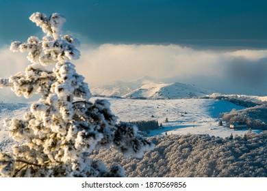 white paradise in high mountain
