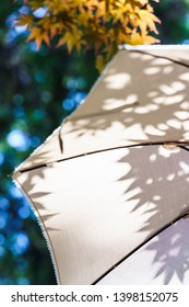 White parasol in the summer sunshine