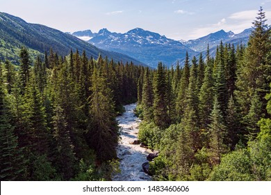 White Pass River running through the forest near Skagway Alaska with rugged snowy mountains in the background