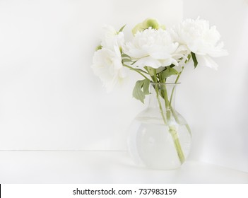 White peony in glass vase on white background