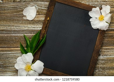 White Peony Rose Flowers with Black Chalkboard Background Card Concept, Top View. Selective focus.