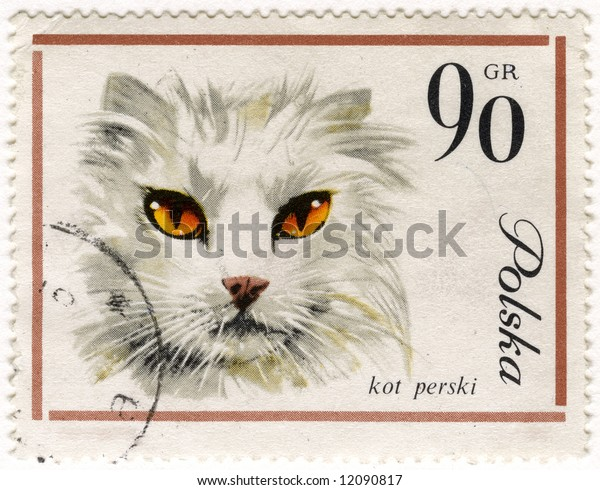 white Persian cat on a vintage, canceled post stamp from Poland