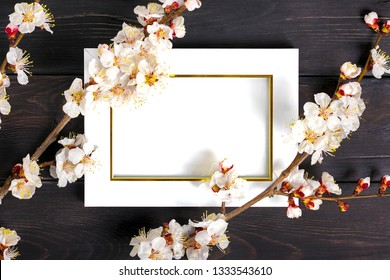 White photo frame and sprigs of the apricot tree with flowers on wooden background. Place for text. The concept of spring came, happy easter, mother's day.Top view.Flay lay. Copy space.