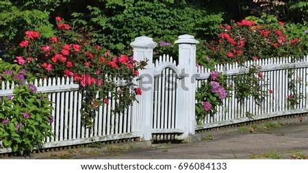 White picket fence flowers stock photo edit now 696084133 white picket fence with flowers mightylinksfo
