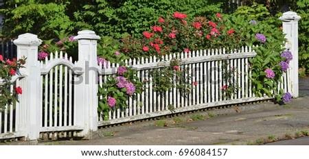 White picket fence flowers stock photo edit now 696084157 white picket fence with flowers mightylinksfo
