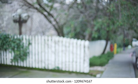 White picket fence with vines and leaves in suburbia