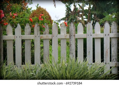 White picket fences.