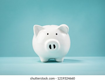 white piggy bank looking straight ahead on a blue background