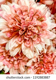 White and Pink Floral Display