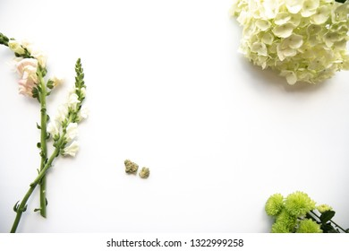 White and Pink Floral Hydrangea Flowers and Marijuana Buds for Product Background Frame - Cannabis Wedding