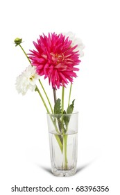 White and pink flowers  in glass vase on  white background