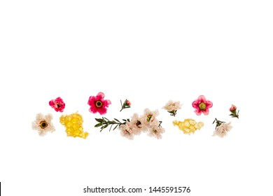 white and pink manuka flowers with organic manuka honey on white background with copy space above