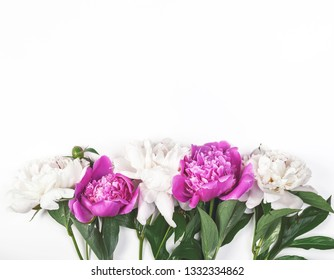 White and pink peony flowers on white background. Top view with copy space. Flat lay.