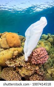 White plastic bag underwater on beautiful coral reef