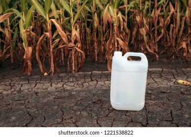 White plastic pesticide chemical jug in cornfield as mock up copy space for herbicide, fungicide or insecticide used in corn crop farming