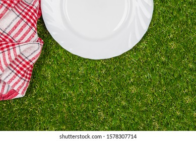 White plate on green grass . Picnic in park.