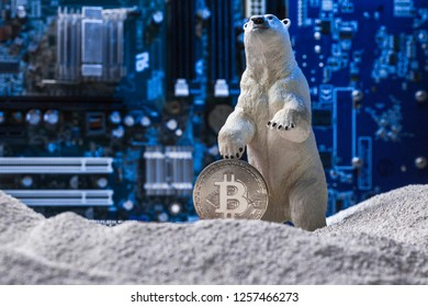 White polar bear holding a silver Bitcoin in snow on blue intergrated circuit background as Nuclear Winter concept