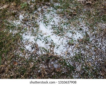 white powder or snow on grass or lawn or yard