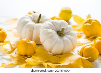 White pumpkin and autumn fruits decoration for Thanksgiving on white background