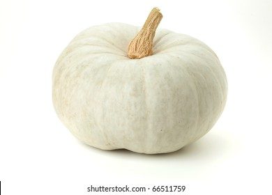 White pumpkin. Isolated on white background