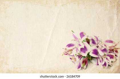 White and purple alstroemerias card background - space for text