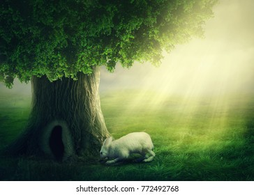 White rabbit and a tree with the hole