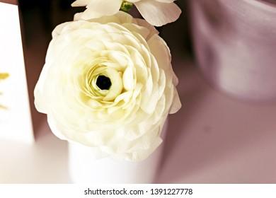 White Ranunculus Flowers In Vase