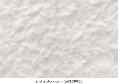 White real wool with a white top texture background, light natural sheep's wool, white seamless cotton, fluffy fur texture for designers, close-up white wool rug