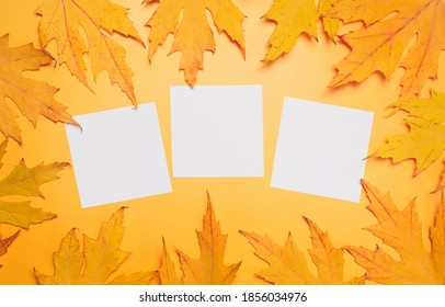 White reminder stickers on yellow autumn background. Autumn concept.