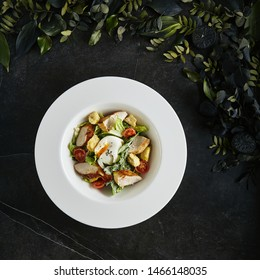 White Restaurant Plate of Caesar Salad with Chicken, Homemade Anchovies Sauces, Croutons, Tomatoes, Greens Top View. Beautiful Delicacy Cesar Salat on Natural Dark Stone and Leaves Background