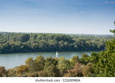 White river boat sailing the Danube under the clear blue sky, between Kalemegdan park and the woods of the Great War Island in Belgrade, Serbia