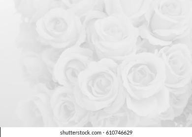 White rose fabric flowers decorative background.