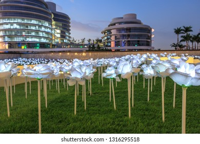The white rose flower glows at night in Taichung Dali Art Plaza, Taichung City, Taiwan