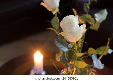 White rose in front of a candle.