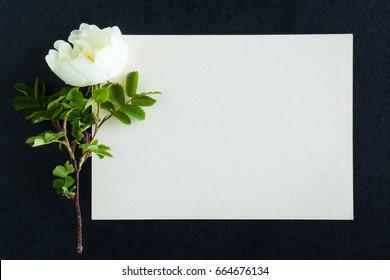 Condolence Images Stock Photos Amp Vectors Shutterstock