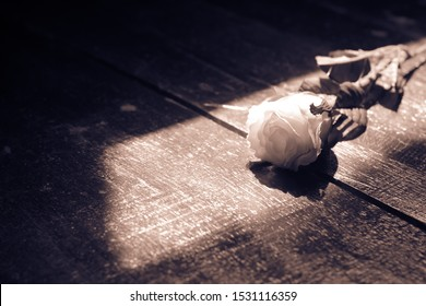 White rose on the wooden floor.broken heart or alone concept.