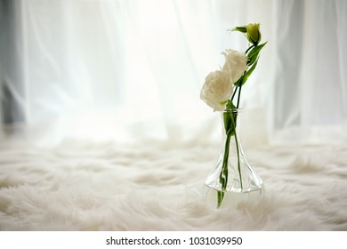 White rose is placed in transparent glass bottle inside white screen window.