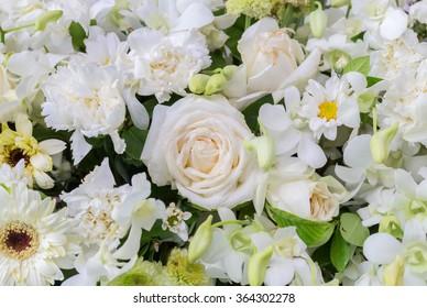 white rose in variety white flowers, wedding background