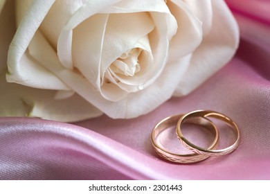 White rose and wedding rings on pink background