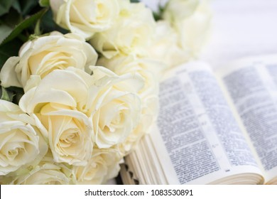 White roses and the Bible. White roses and the Bible on a white wooden background
