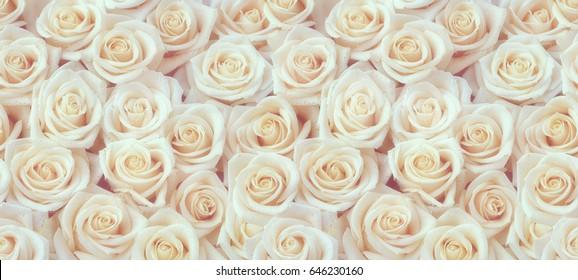 White roses horizontal seamless pattern. White roses arrangement.