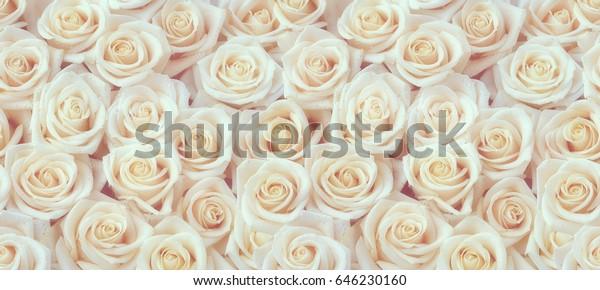 Белые розы горизонтальный бесшовный рисунок. Композиция из белых роз.