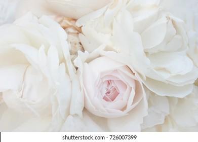 White roses macro bunch