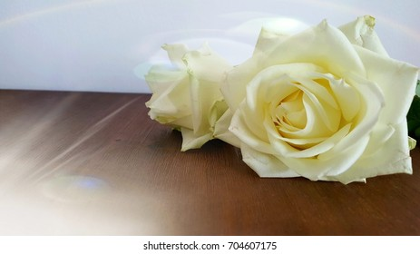 White roses on a wooden table.