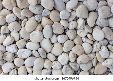 White round stones on the ground
