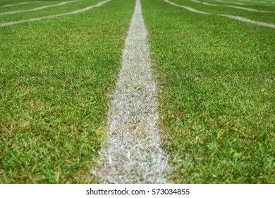 White running line painted on a grass field